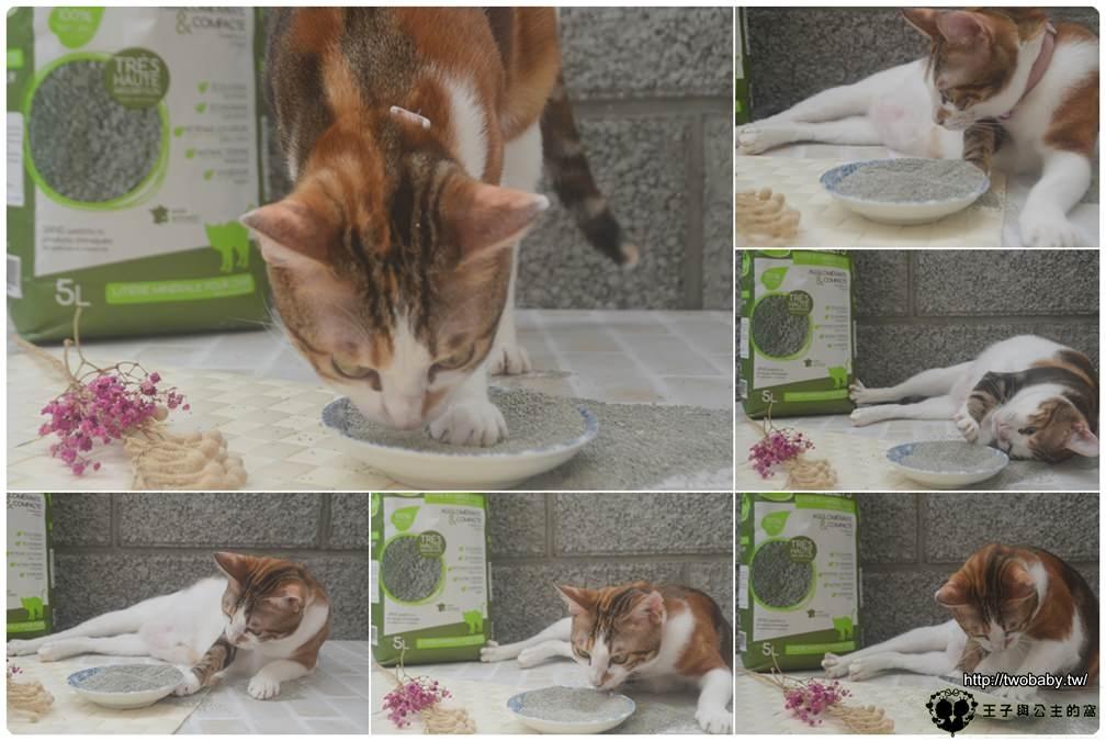 宅配貓咪好物-法國昕陽 GREELYS 天然有機火山泥貓砂-法國貓砂-達伶寵物精品