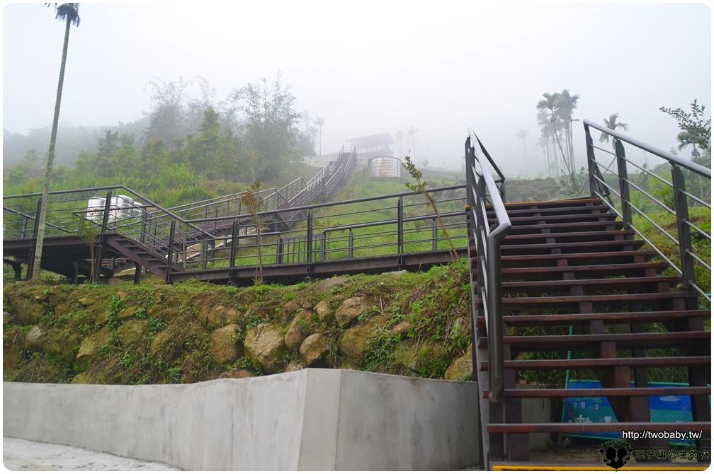 嘉義新景點|阿里山管理處耗資千萬打造的全新秘境|阿里山公興村龍美步道