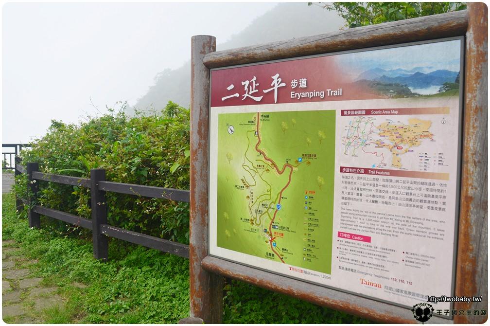 嘉義新景點 阿里山管理處耗資千萬打造的全新秘境 阿里山公興村龍美步道