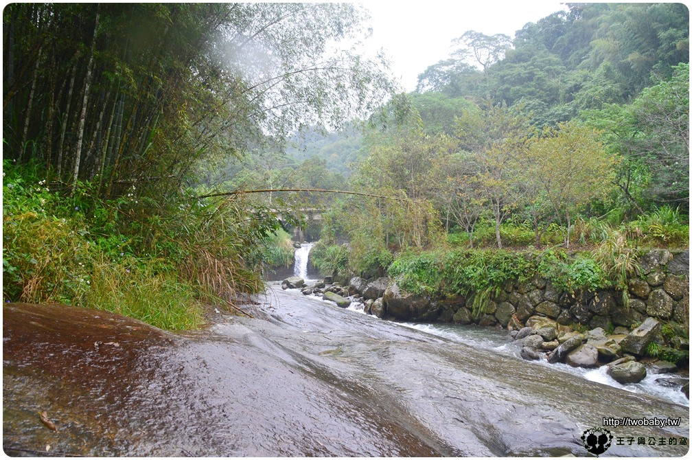 雲林古坑景點 古坑草嶺石壁仙谷風景區+連心池瀑布 深山自然秘境-石壁風景區