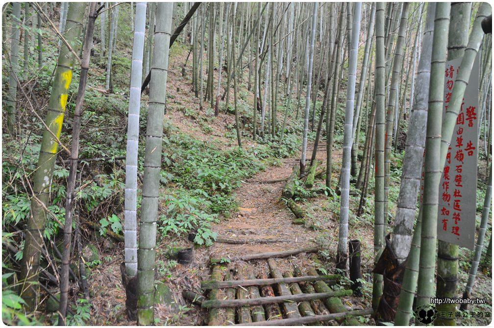 雲林古坑草嶺景點|石壁風景區 五元兩角祕境+木馬古道雲林