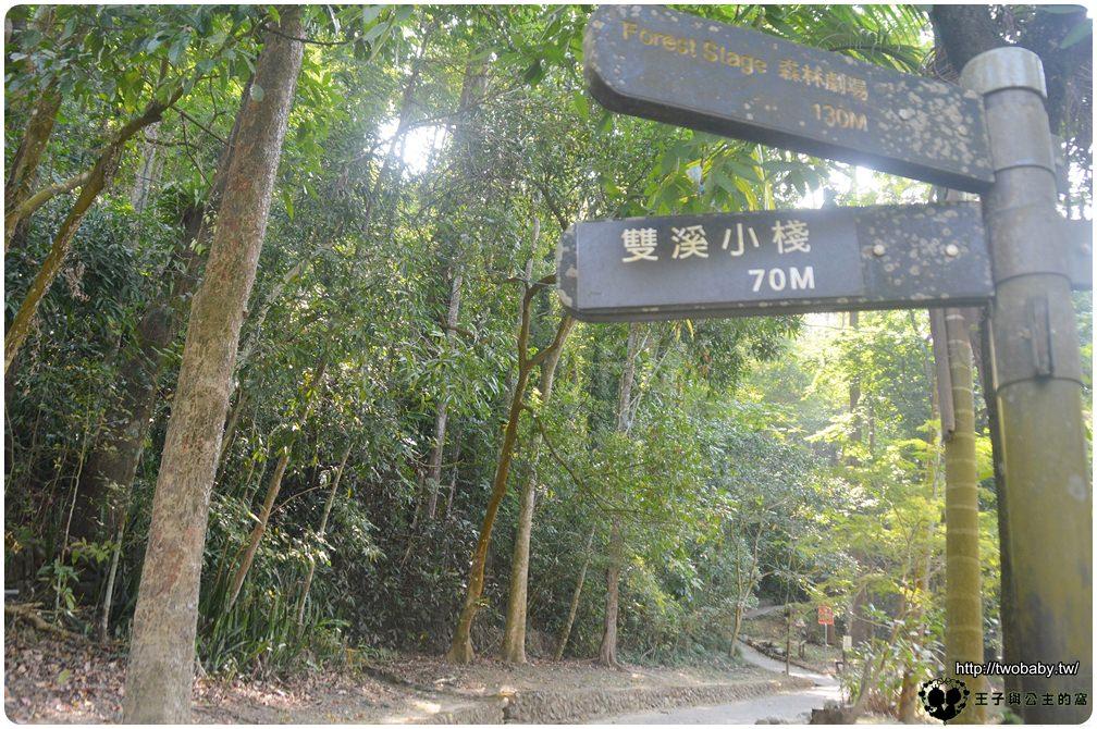 高雄美濃景點|美濃森林步道/自然步道-雙溪樹木園&黃蝶翠谷 高雄森林步道